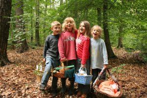 Kinder mit Picknickkörben im Wald.